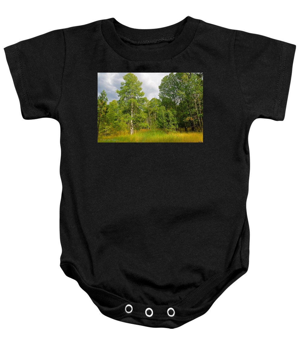 Aspen Baby Onesie featuring the photograph Aspen And Others by Jim Thompson