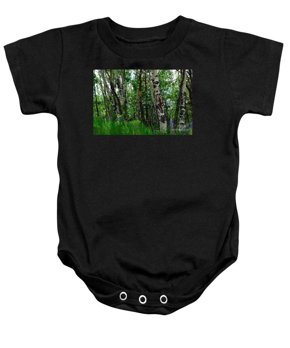 Trees Baby Onesie featuring the photograph Aspen Trees by Crystal Miller