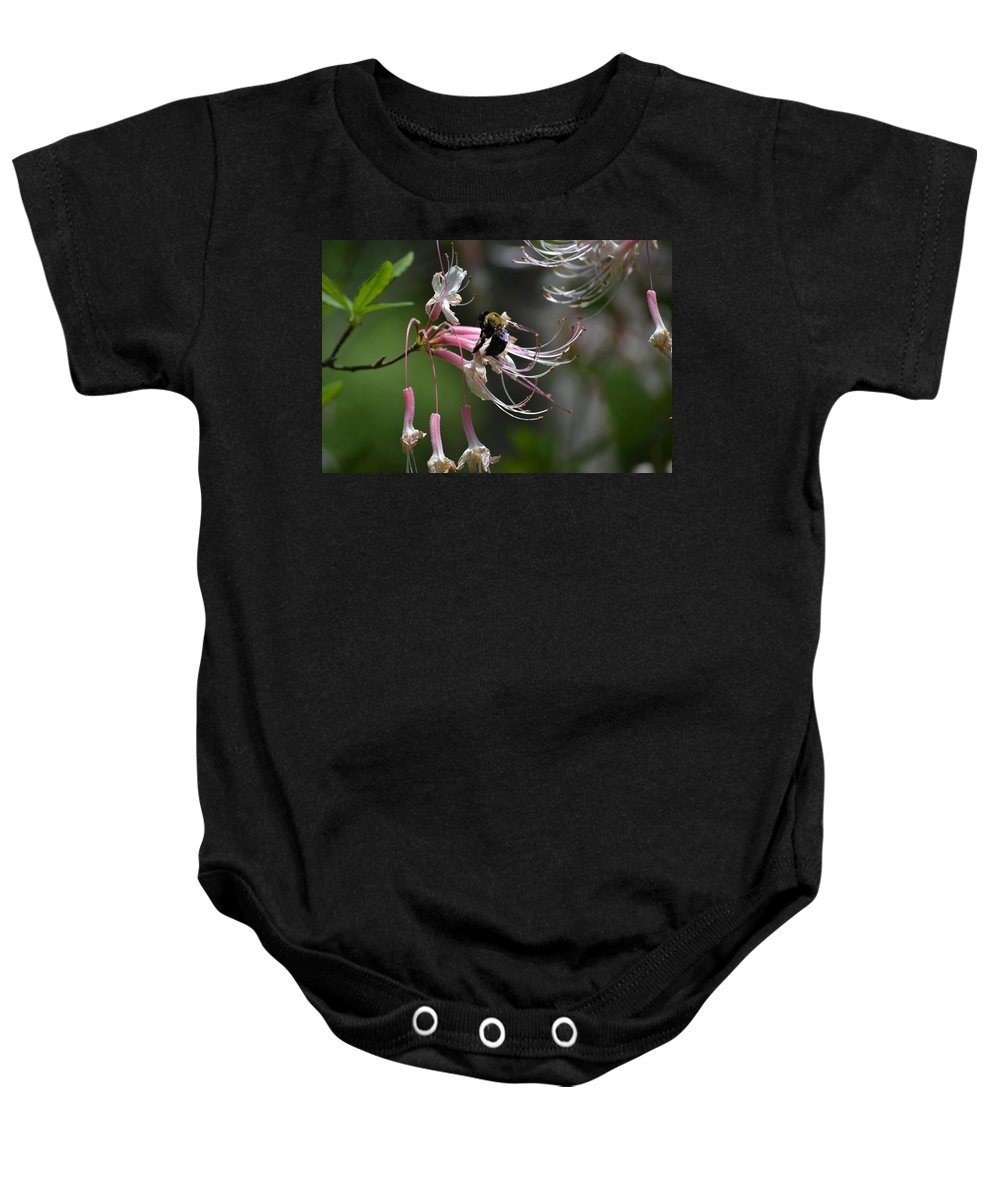 Busy Baby Onesie featuring the photograph At Work by Tara Potts