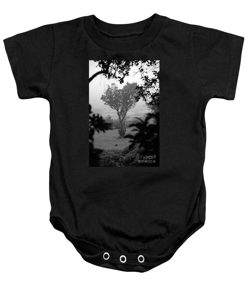 Landscape Baby Onesie featuring the photograph Attached by Dattaram Gawade