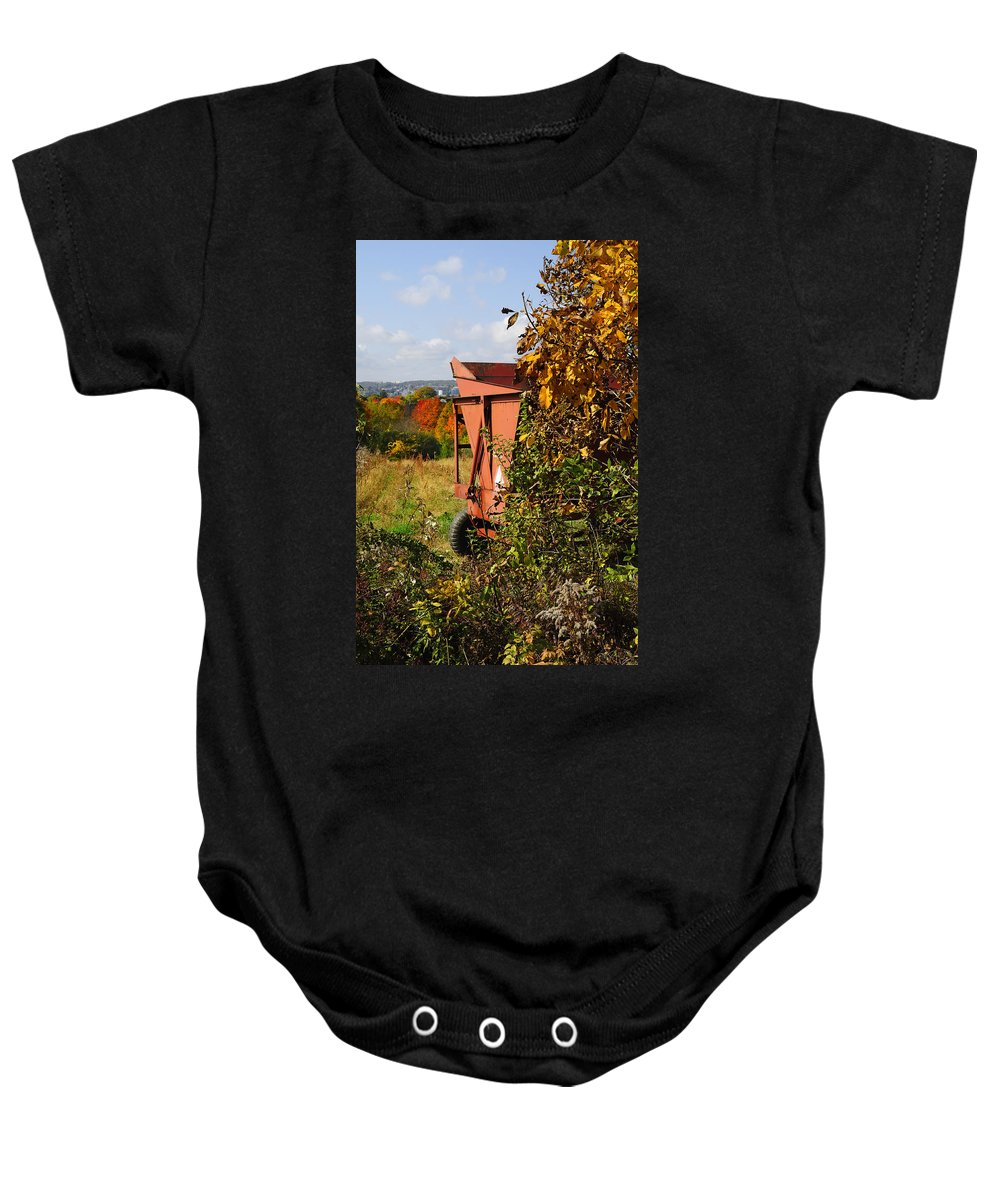 Foliage Baby Onesie featuring the photograph Autumn Harvest by Luke Moore