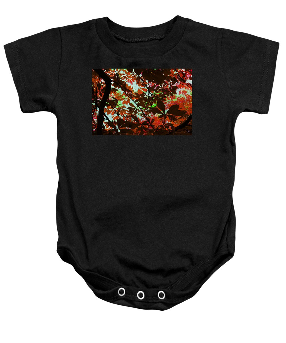 Leaves Baby Onesie featuring the photograph Autumn Leaf Abstract by David Pringle