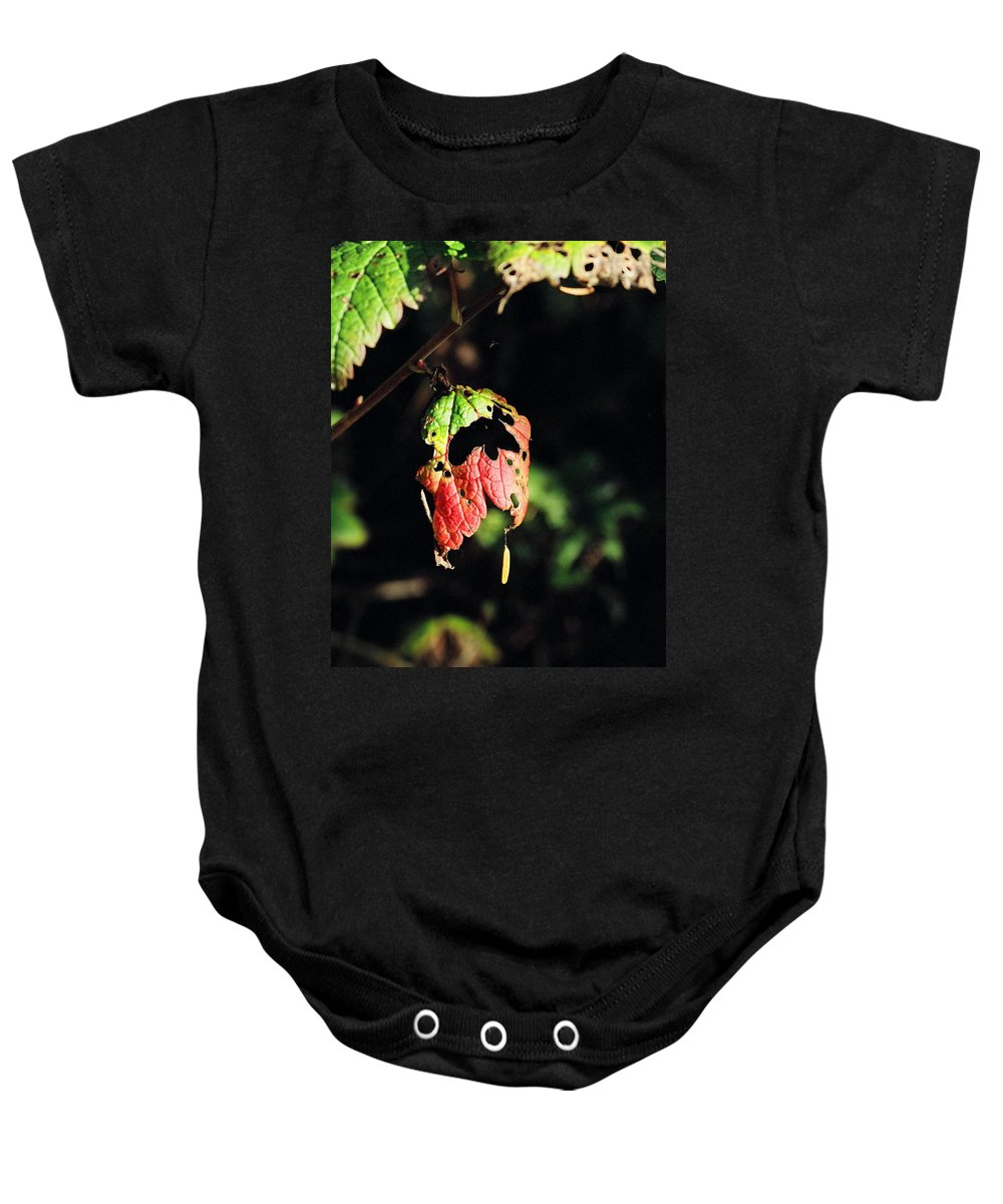 Autumn Baby Onesie featuring the photograph Autumn Leaf by Cathy Mahnke