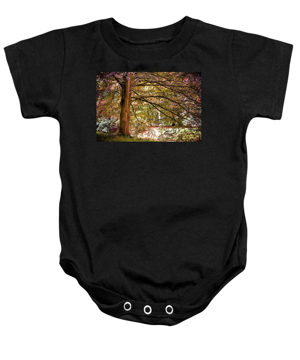 Utrecht Baby Onesie featuring the photograph Autumnal Colors In The Summer Time. De Haar Castle Park by Jenny Rainbow