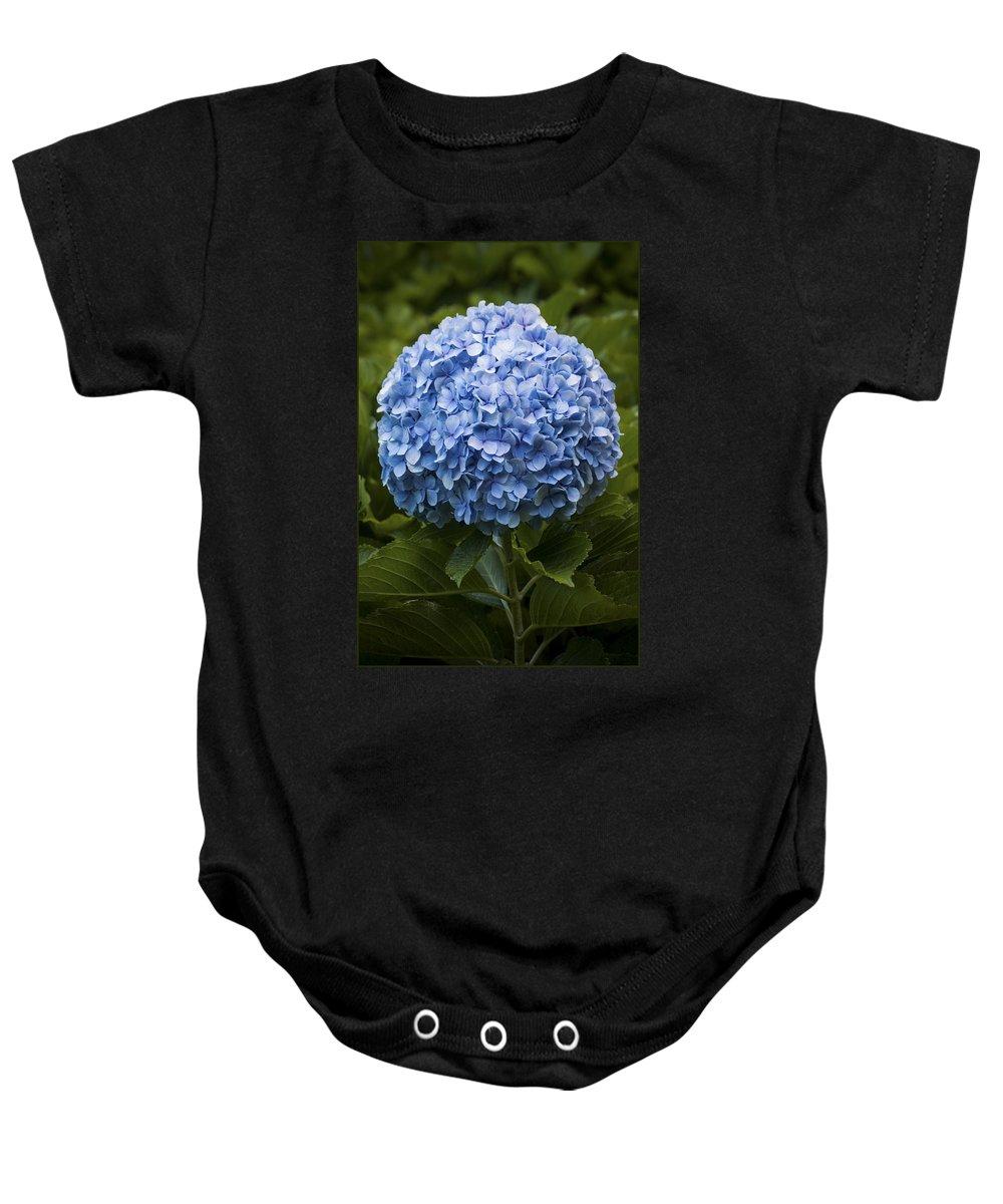 Azores Baby Onesie featuring the photograph Blue Hydrangea by M Bernardo