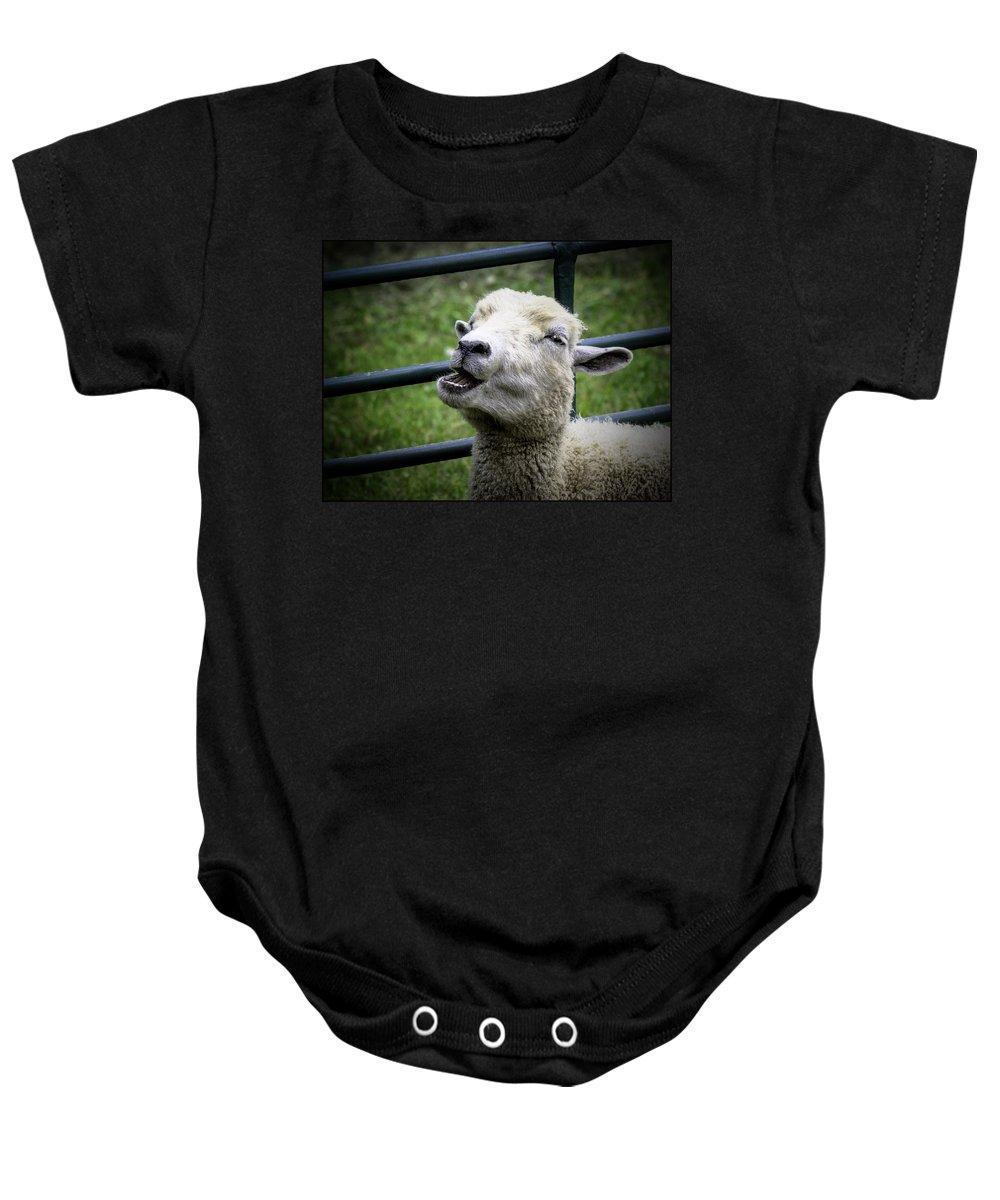 Sheep Baby Onesie featuring the photograph Baa Baa Black Sheep by LeeAnn McLaneGoetz McLaneGoetzStudioLLCcom
