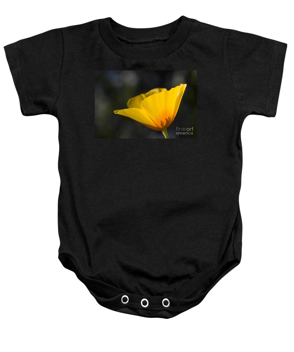 Flower Baby Onesie featuring the photograph Backlit Poppy by Bryan Keil