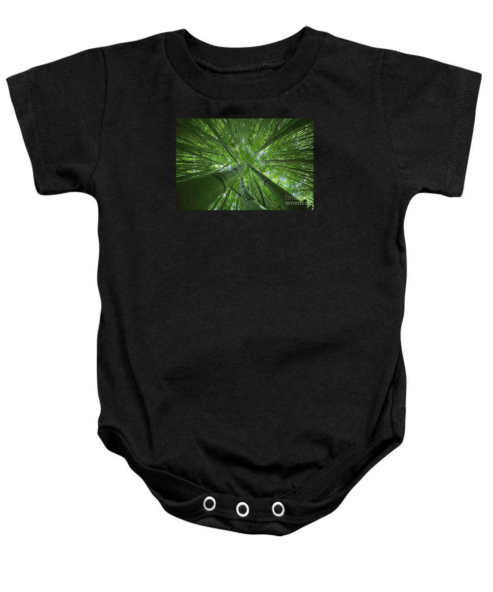 Bamboo Baby Onesie featuring the photograph Bamboo Forest 2 by M Swiet Productions
