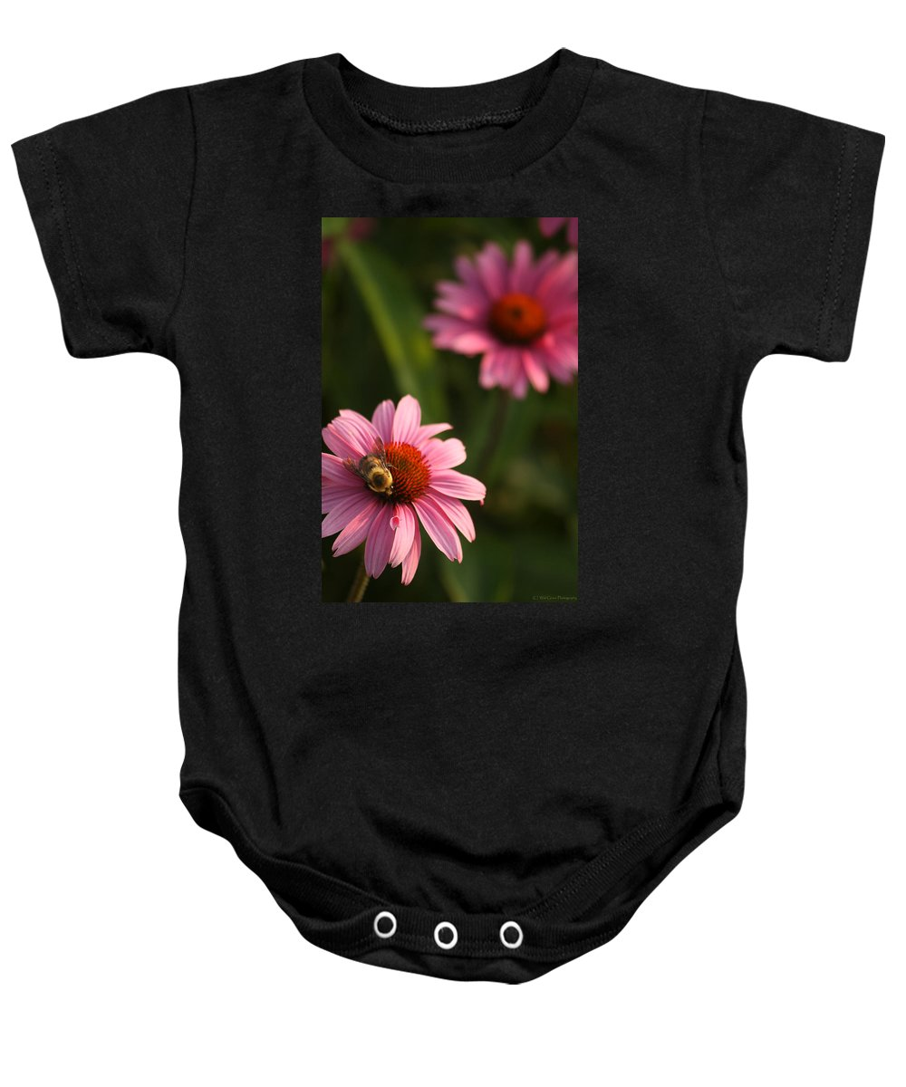 Bugs Baby Onesie featuring the photograph Bee On Coneflower by Crystal Heitzman Renskers