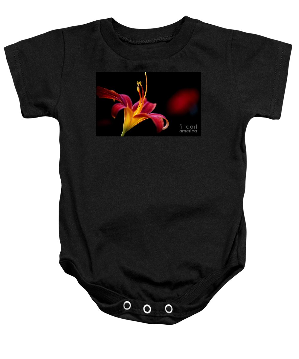 Calyx Baby Onesie featuring the photograph Belladonna Lily by Heiko Koehrer-Wagner