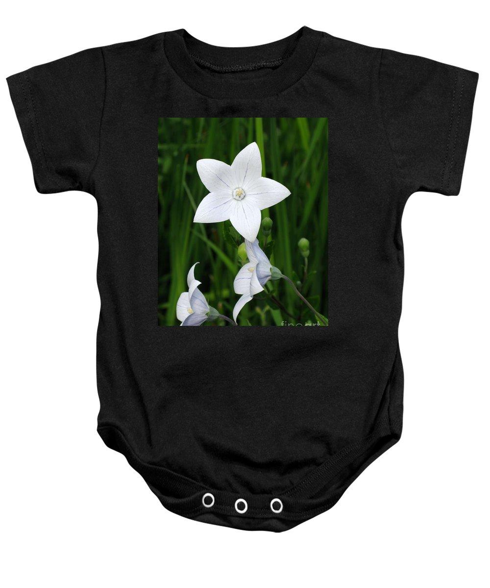 Bellflower Baby Onesie featuring the photograph Bellflower - Campanula Carpatica by Ann Horn
