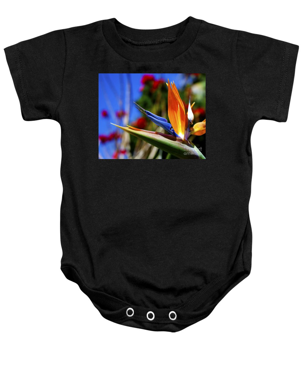 Colorful Bird Of Paradise Photographs Baby Onesie featuring the photograph Bird Of Paradise Open For All To See by Jerry Cowart