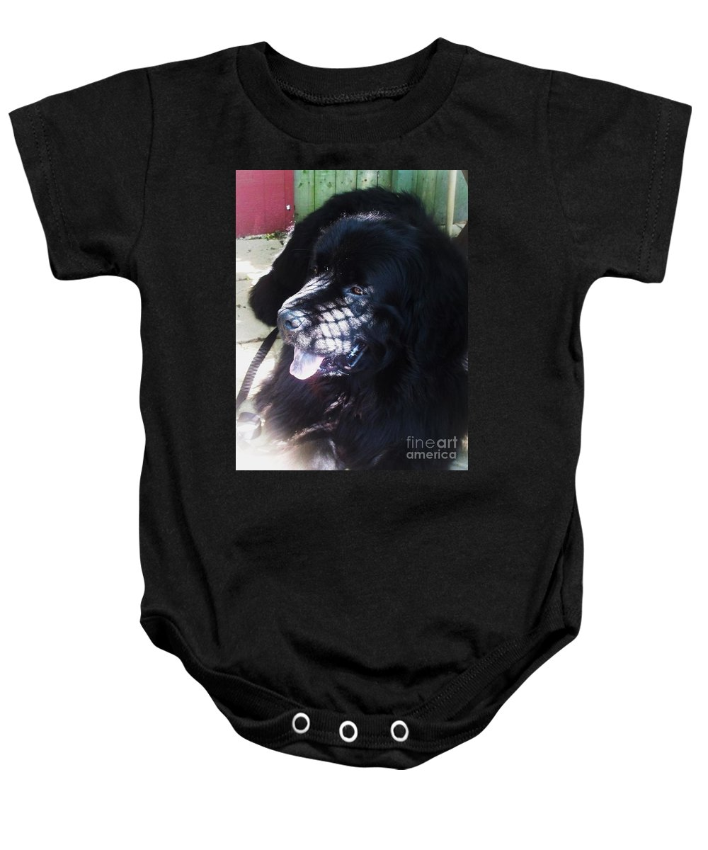 Dog Baby Onesie featuring the photograph Black Dog by Eric Schiabor