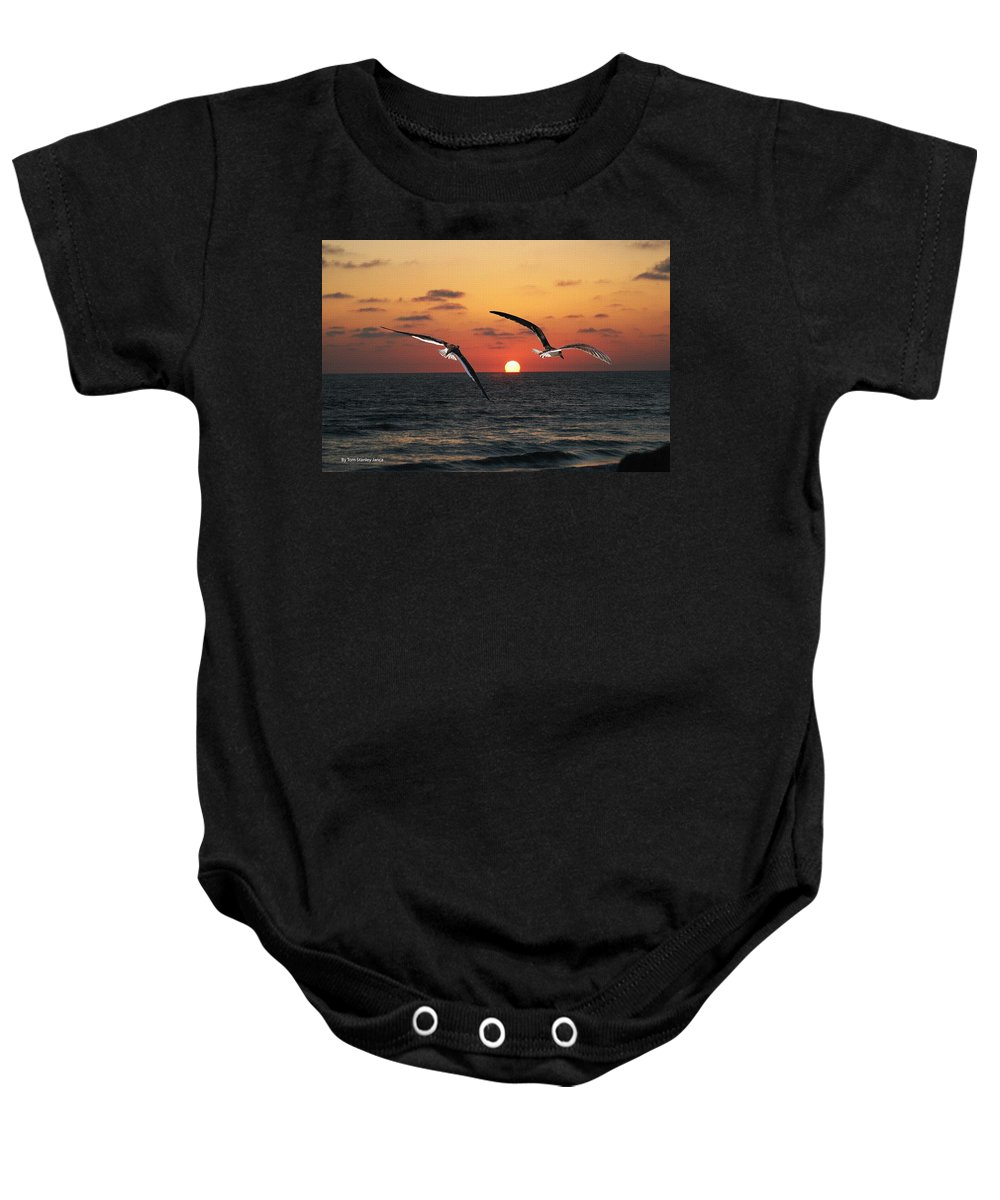 Black Skimmers Baby Onesie featuring the photograph Black Skimmers At Sunset by Tom Janca