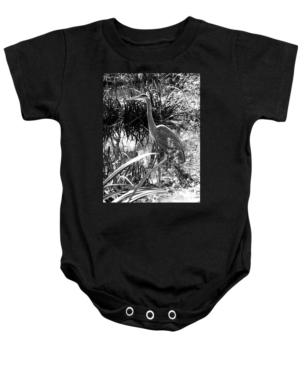 Landscape Baby Onesie featuring the photograph Blue Heron 7bw by Earl Johnson