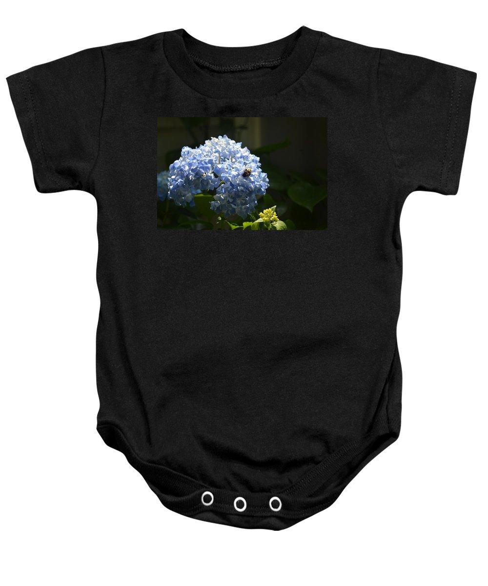 Blue Hydrangea With Bumblebee Baby Onesie featuring the photograph Blue Hydrangea With Bumblebee by Maria Urso
