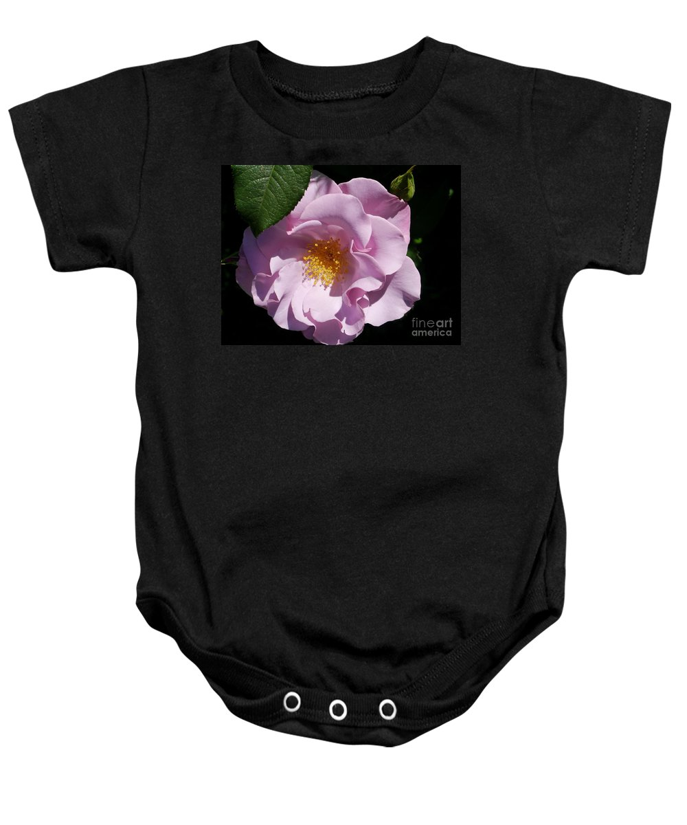 Floribunda Roses Baby Onesie featuring the photograph Blueberry Hill by Christiane Schulze Art And Photography