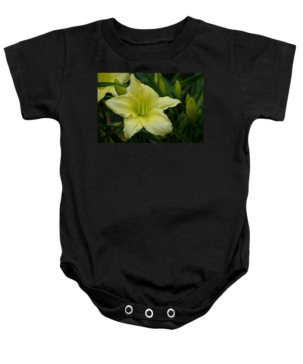 Blushing Yellow - Lilies Baby Onesie featuring the photograph Blushing Yellow - Lilies by Maria Urso