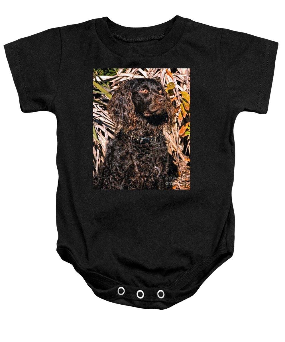 Woodcock Baby Onesies