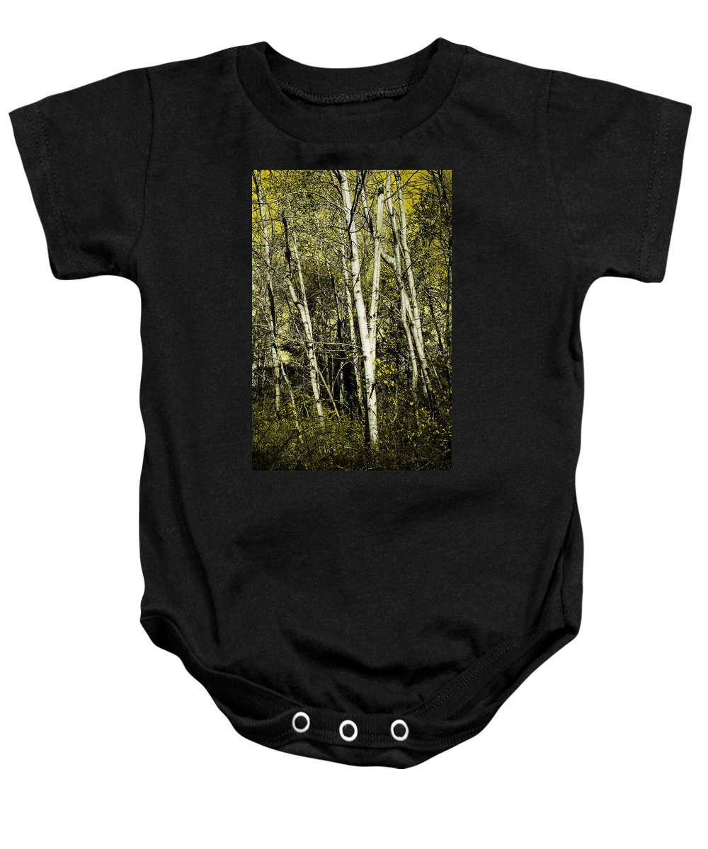 Trees Baby Onesie featuring the photograph Briers And Brambles by Luke Moore