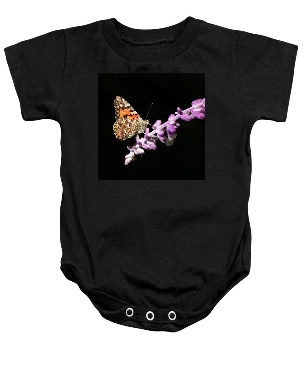 Painted Lady Baby Onesie featuring the photograph Painted Lady Butterfly On Purple Flower by Marilyn Hunt