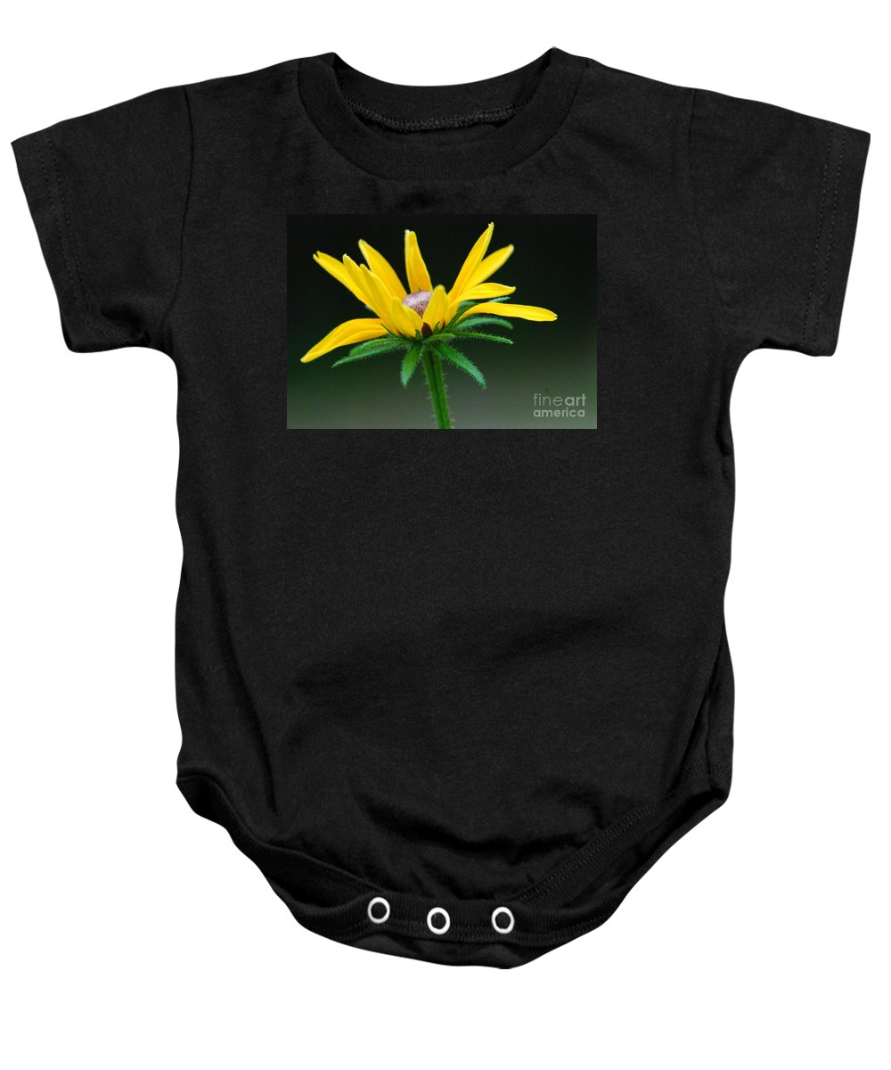 Yellow Flower Baby Onesie featuring the photograph Brown-eyed Susan by Amy Porter
