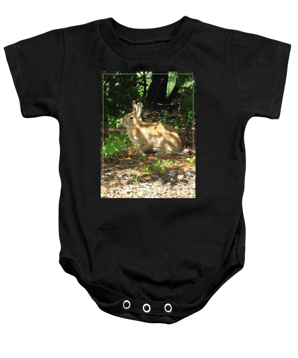 Rabbit Baby Onesie featuring the photograph Bunny In The Wild 2 by Sara Raber
