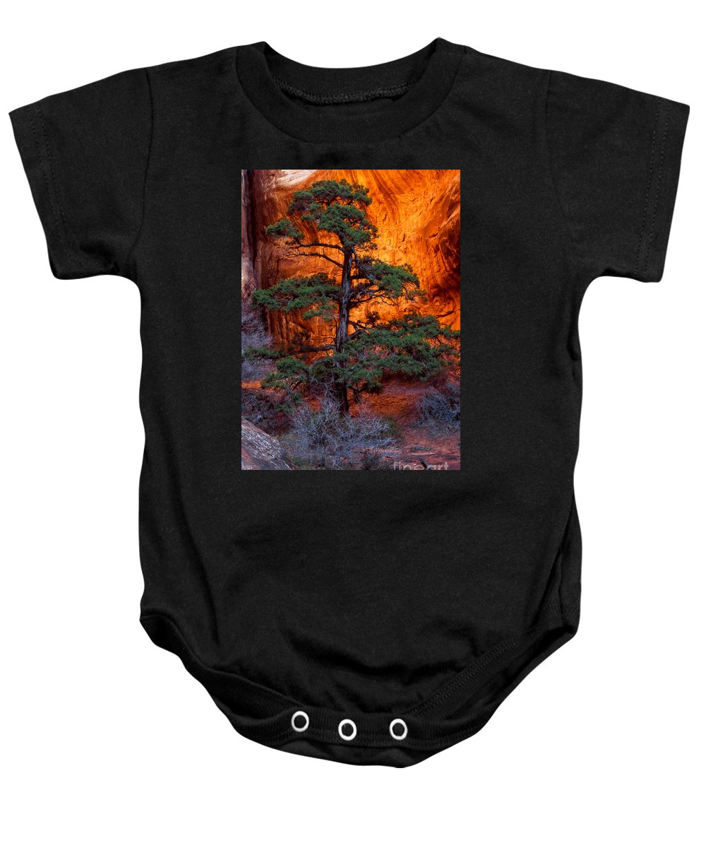 Landscape Arch Trail Baby Onesie featuring the photograph Burning Bush by Bob Phillips