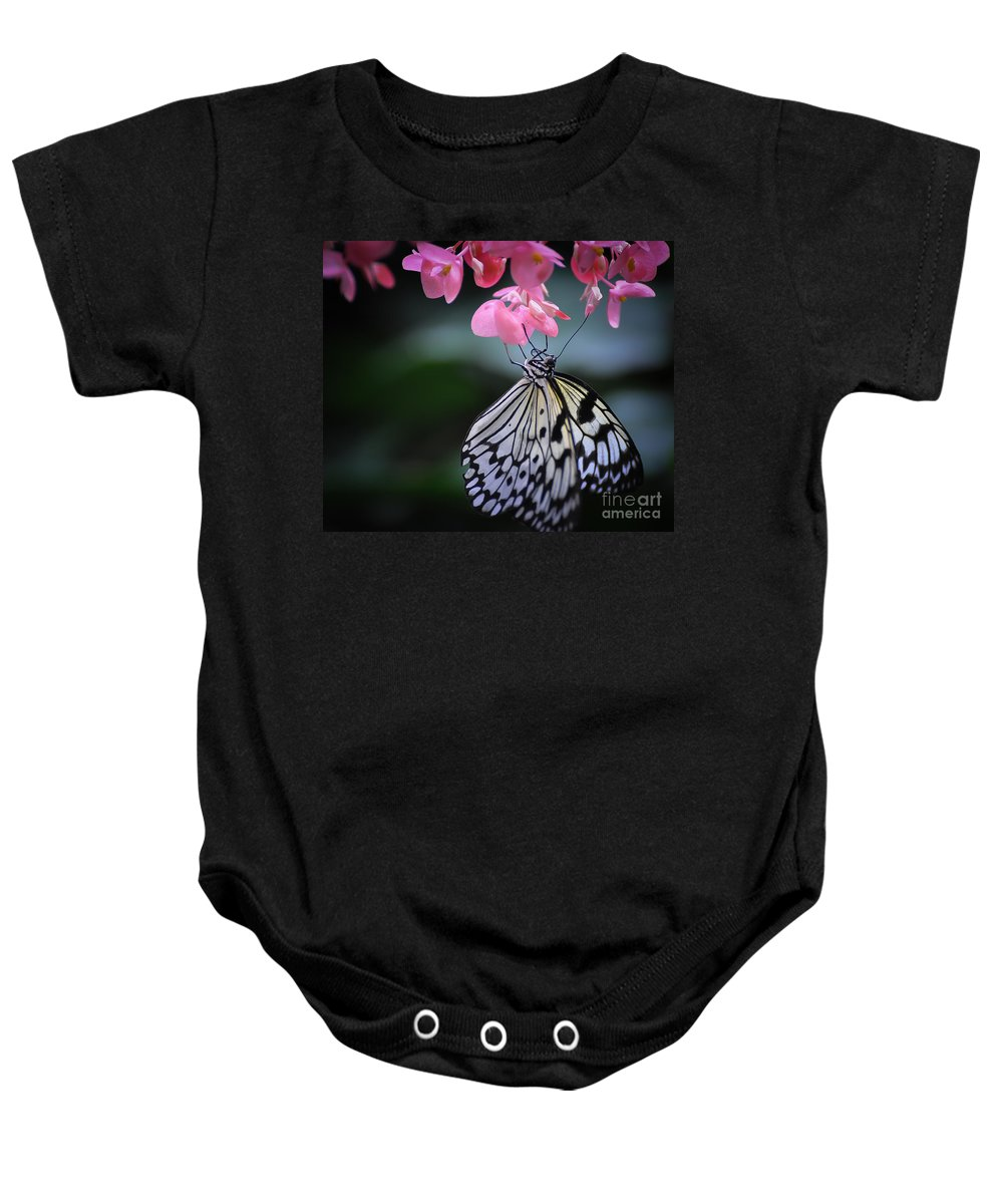 Butterfly Baby Onesie featuring the photograph Butterfly And Blossoms by Bianca Nadeau