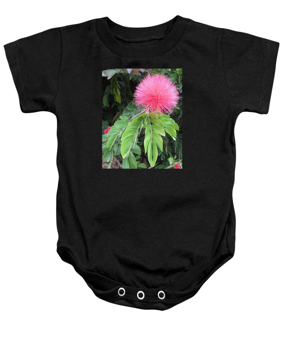 Garden Baby Onesie featuring the photograph Calliandra Blossom by Alison Stein