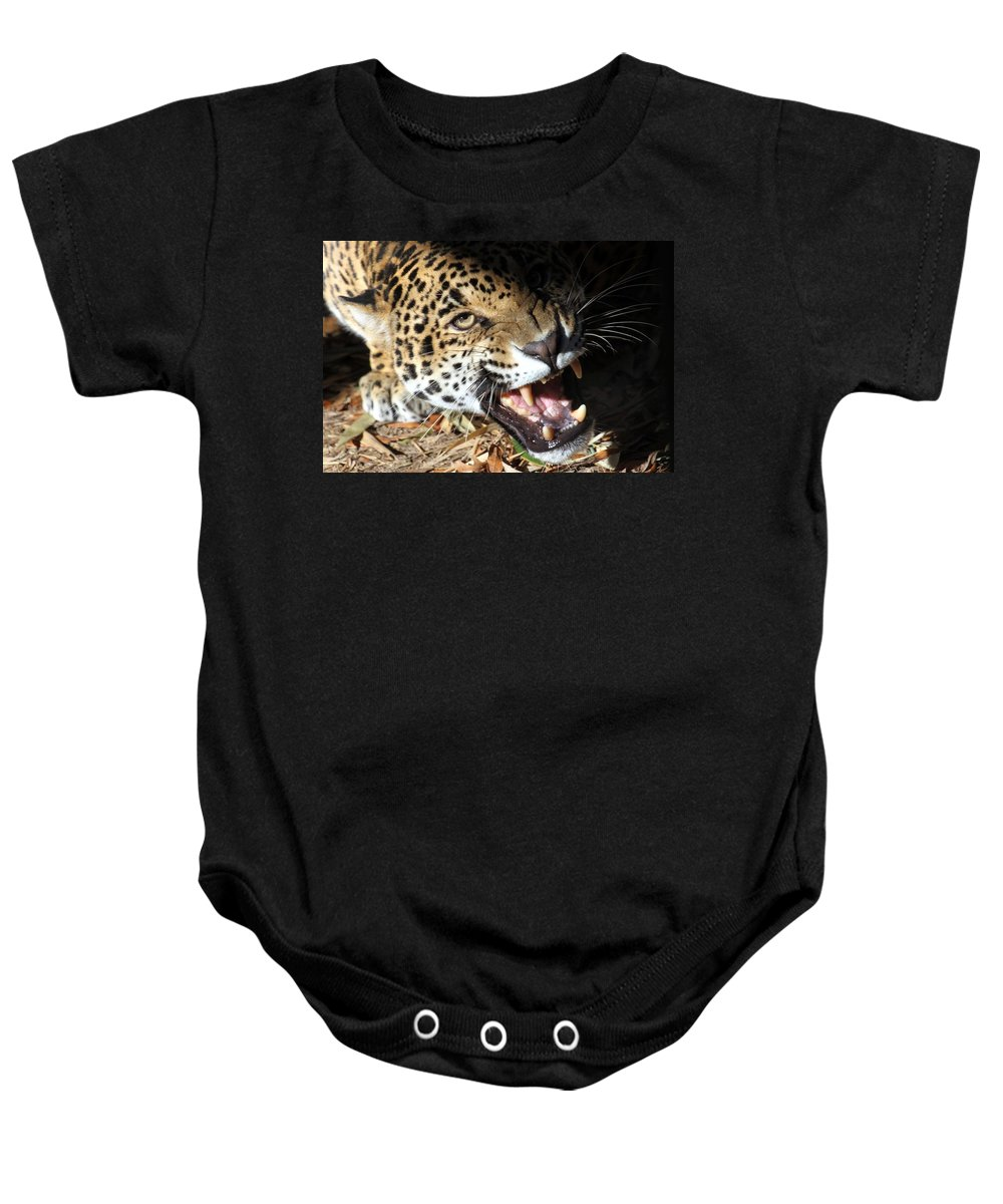 Jaguar Baby Onesie featuring the photograph Can You Hear Me Now? by Christopher Miles Carter