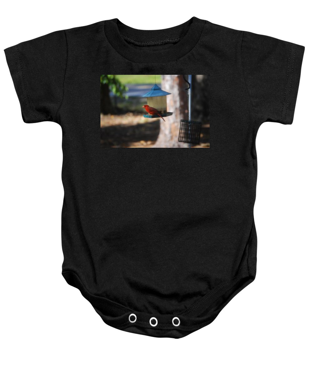 Frequent Visitor Baby Onesie featuring the photograph Cardinal by Robert Floyd