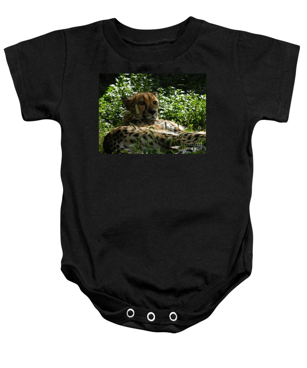Cheetah Baby Onesie featuring the photograph Cheetah 2 by Heather Jane