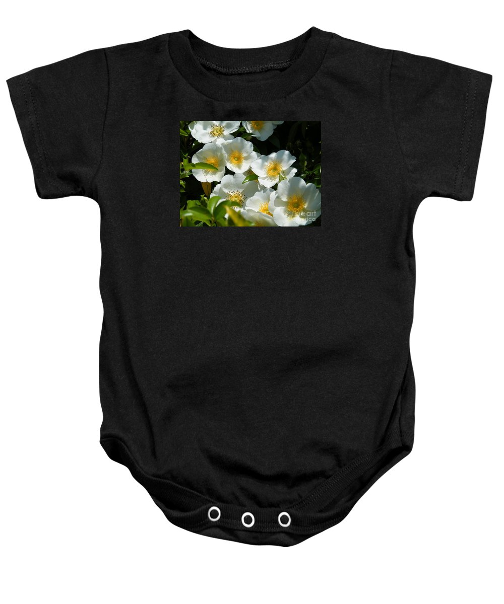 Cherokee Rose Baby Onesie featuring the photograph Cherokee Rose 2011 by Cheryl Hardt Art