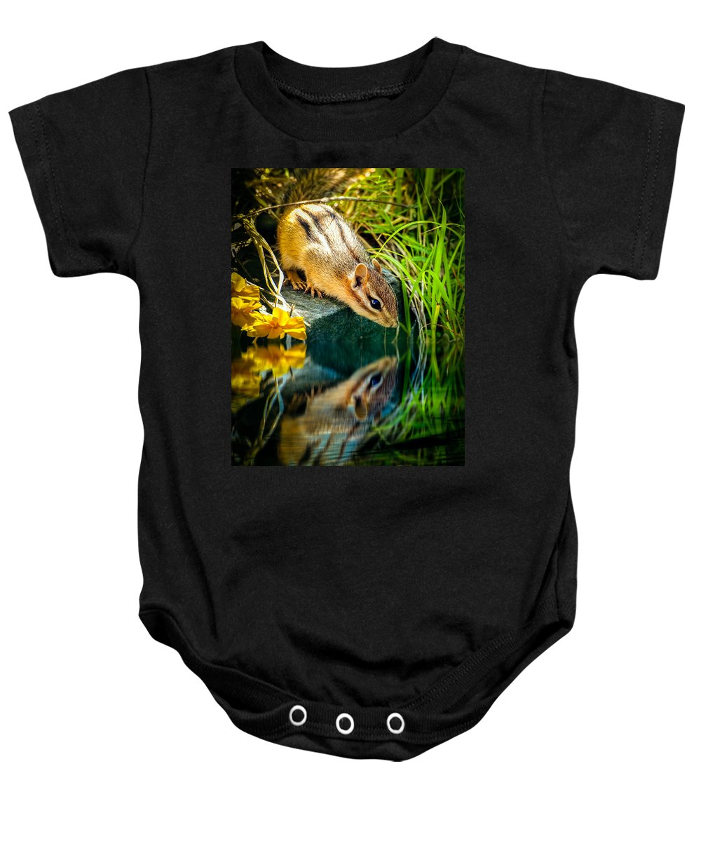 Chipmunk Baby Onesie featuring the photograph Chipmunk Reflection by Bob Orsillo