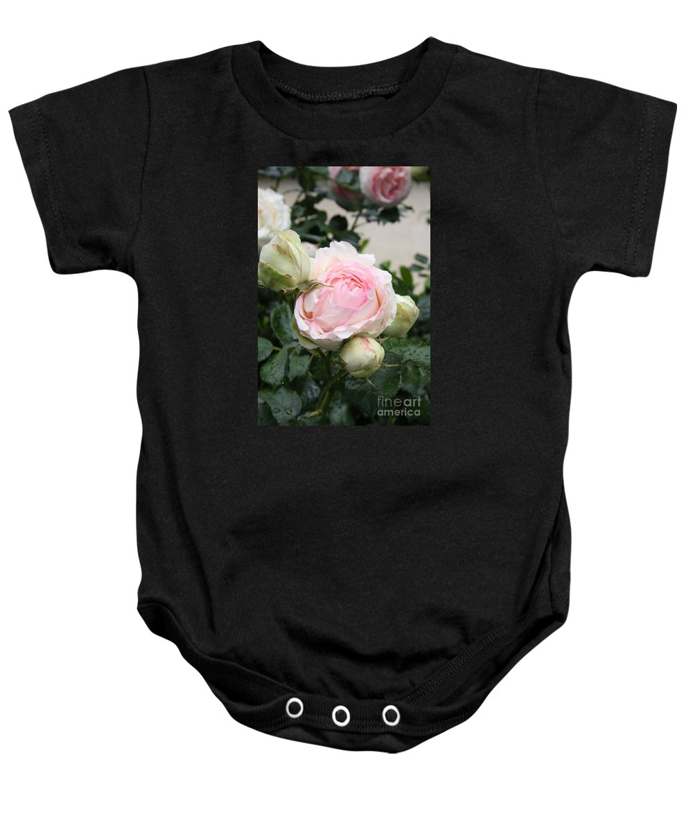 Roses Baby Onesie featuring the photograph Classic Rose by Christiane Schulze Art And Photography