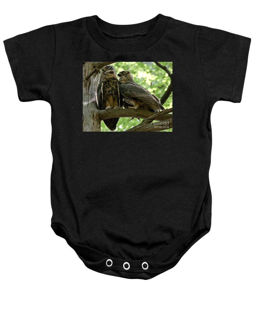 Owlets Baby Onesie featuring the photograph Close As Brothers by Cheryl Baxter