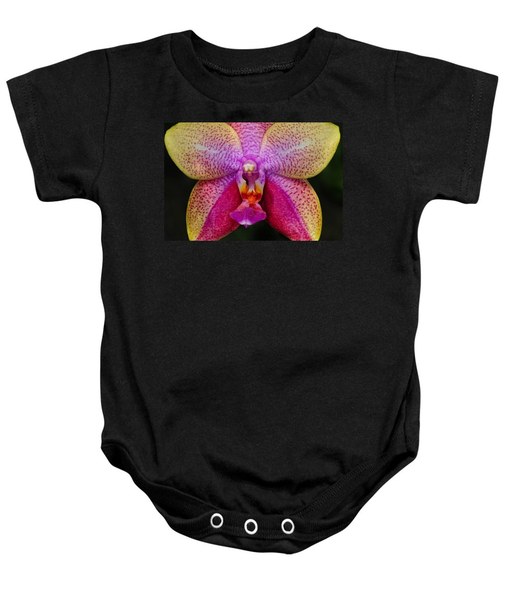 Orchid Baby Onesie featuring the photograph Colorful Orchid by Dave Mills