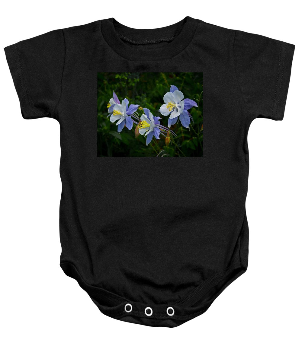 Artwork Baby Onesie featuring the photograph Columbines by Ernie Echols