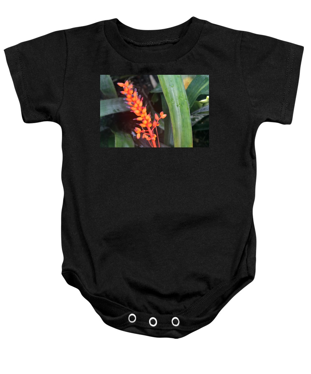 Green Baby Onesie featuring the photograph Contestation by Munir Alawi