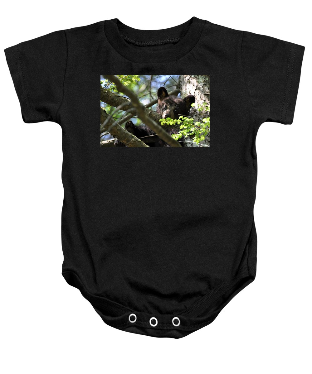 Black Bear Baby Onesie featuring the photograph Cubby by Todd Hostetter