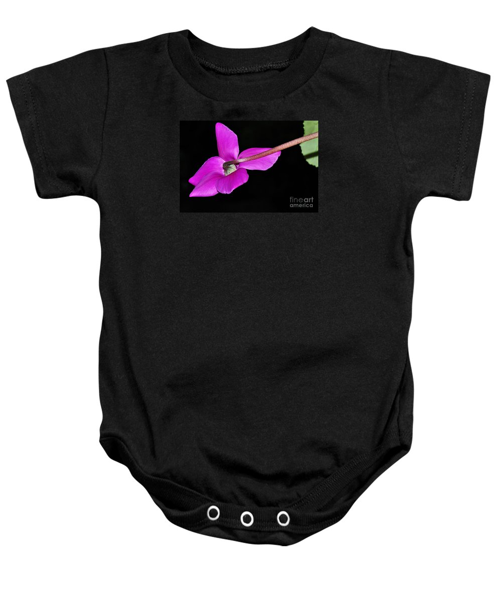 Photography Baby Onesie featuring the photograph Cyclamen In Flight by Kaye Menner