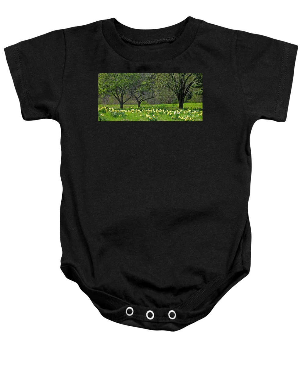 Spring Baby Onesie featuring the photograph Daffodil Meadow by Ann Horn