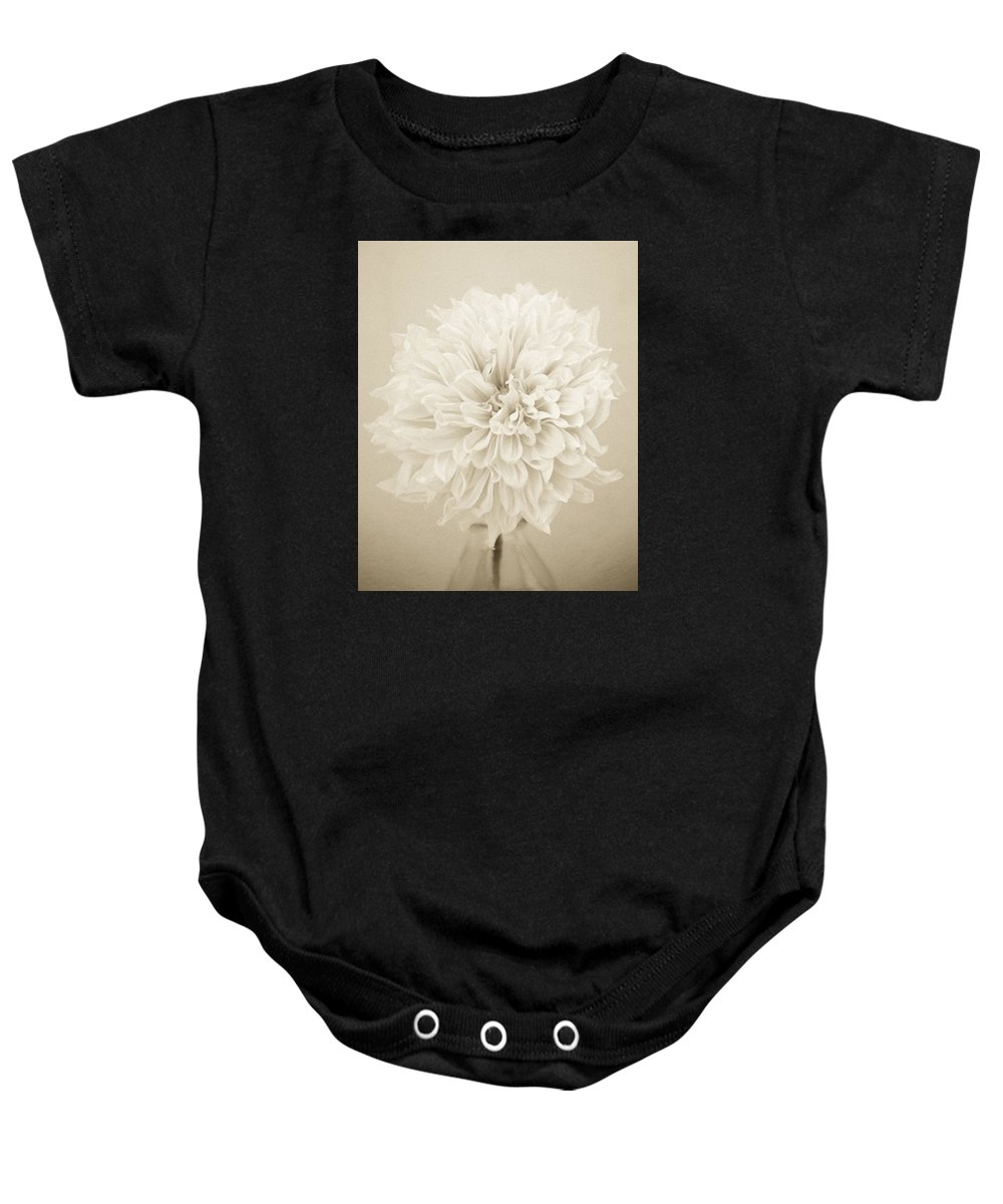 Dahlia Baby Onesie featuring the photograph Dahlia In Sepia by Stephanie Hogue