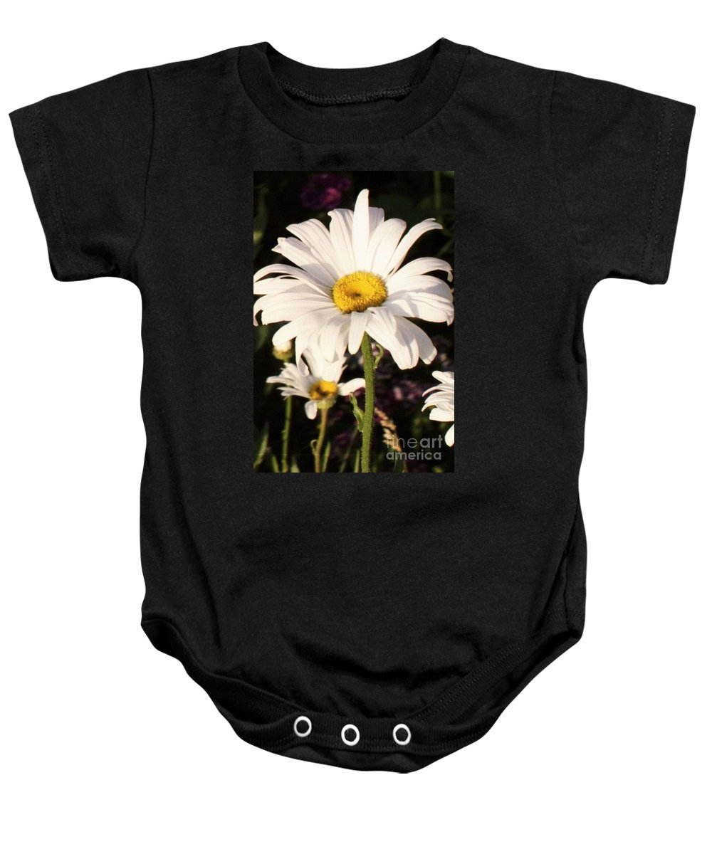 Daisy Baby Onesie featuring the photograph Daisy Close Up by Brandi Maher