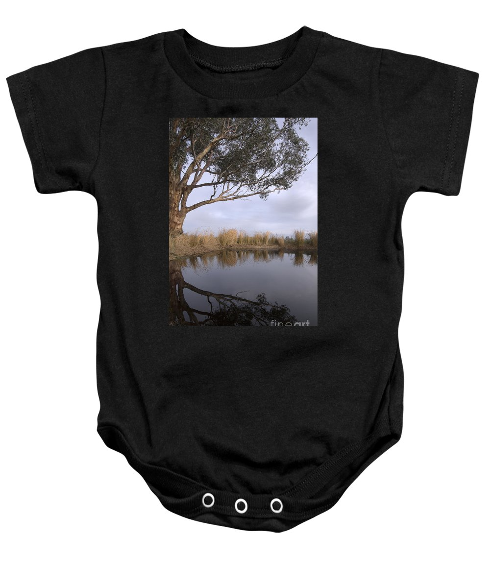 Eucalyptus Baby Onesie featuring the photograph Dam by Linda Lees