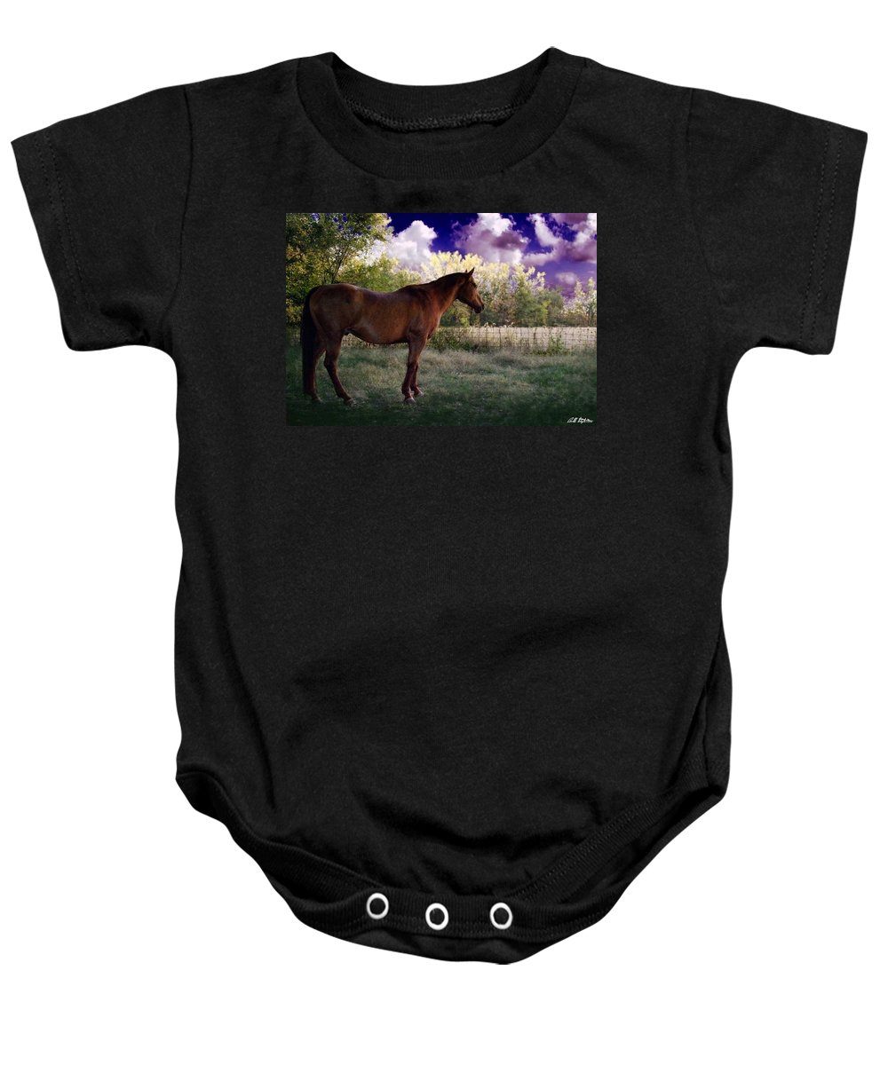 Horses Baby Onesie featuring the photograph Dane by Bill Stephens