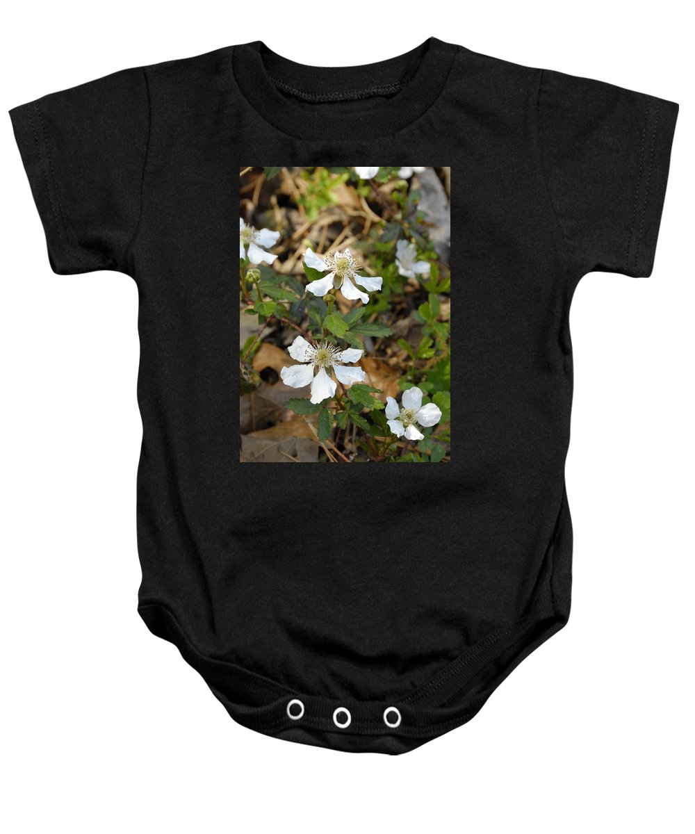Dewberry Baby Onesie featuring the photograph Dewberry Flower by Charles Beeler