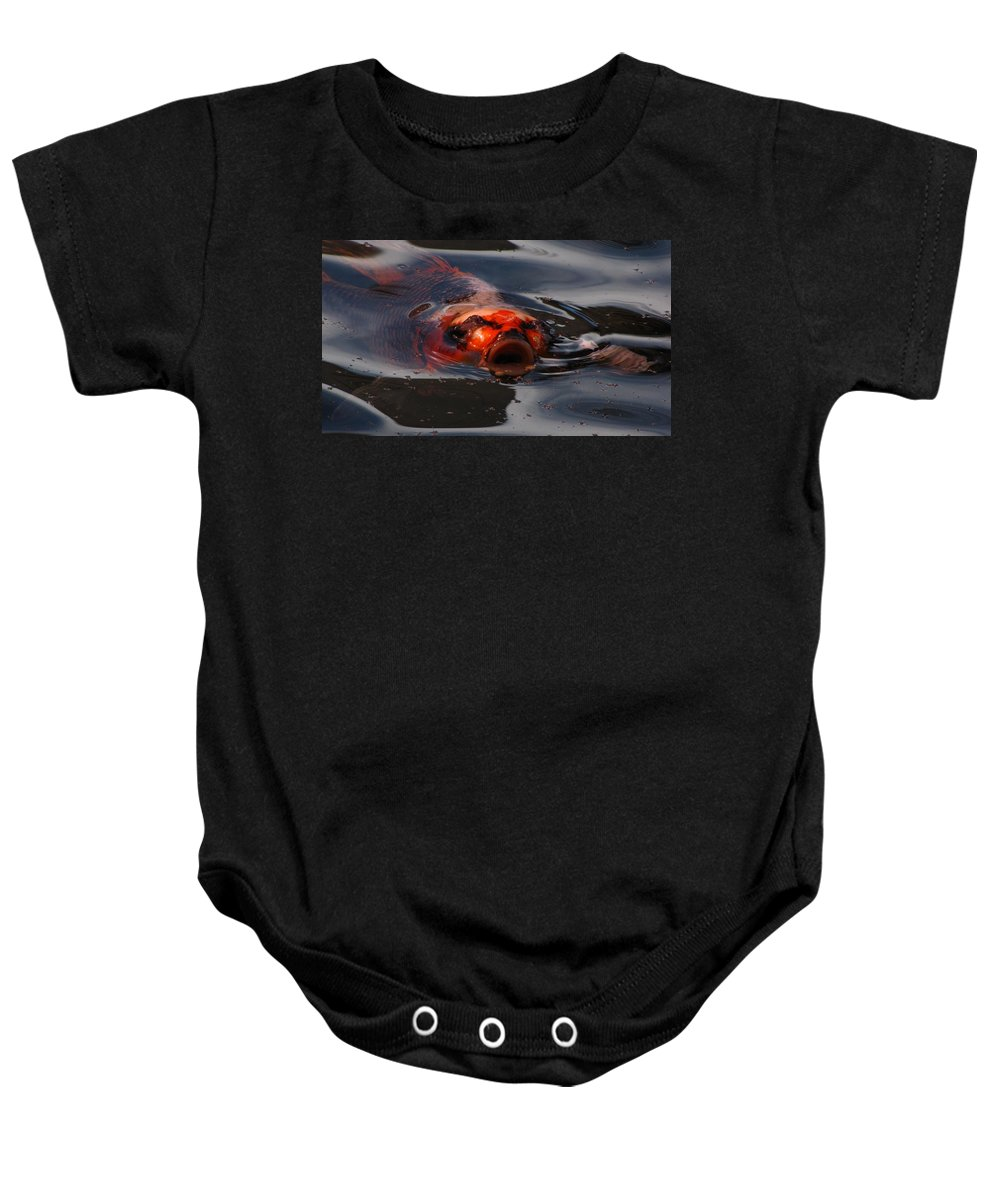 Koi Baby Onesie featuring the photograph Dinner Time For Koi by Jennifer Wheatley Wolf
