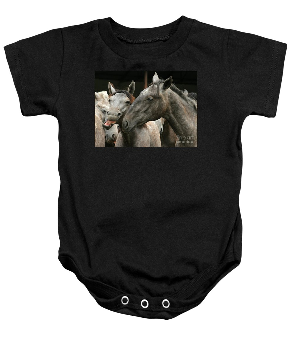 Horse Baby Onesie featuring the photograph Do I Have A Nice Smile by Angel Ciesniarska